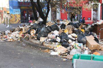 les rats attirés par les poubelles à Marseille